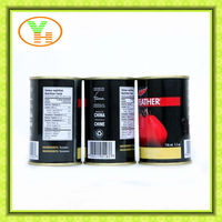 halal food products,Mushed tomato sauce with high quality and copetitive price