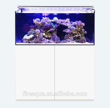 FireAQUA professional reef fish tank for imported