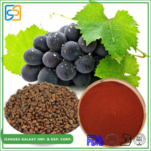 China factory proanthocyanidin powder best selling grape seed extract beauty plant
