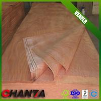 hot sale skateboard veneer with low price