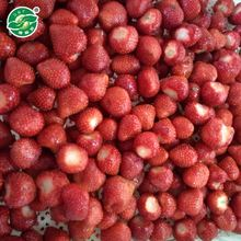 ISO Approved Bulk Strawberry Whosale Boxes For Packing Strawberry Jam Juice Puree Price For Frozen Strawberry