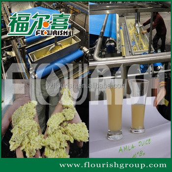 India amla belt press juice extractor processing line