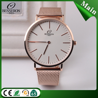 Famous High quality Low MOQ Many Straps Besseron Brand Watch