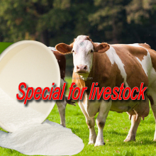 Animal Feed Additive Garlic Extract Allicin / Garlicin Powder