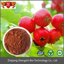 High quality whitethorn Plant Hawthorn berry extract Crataegus Pinnatifida extract powder
