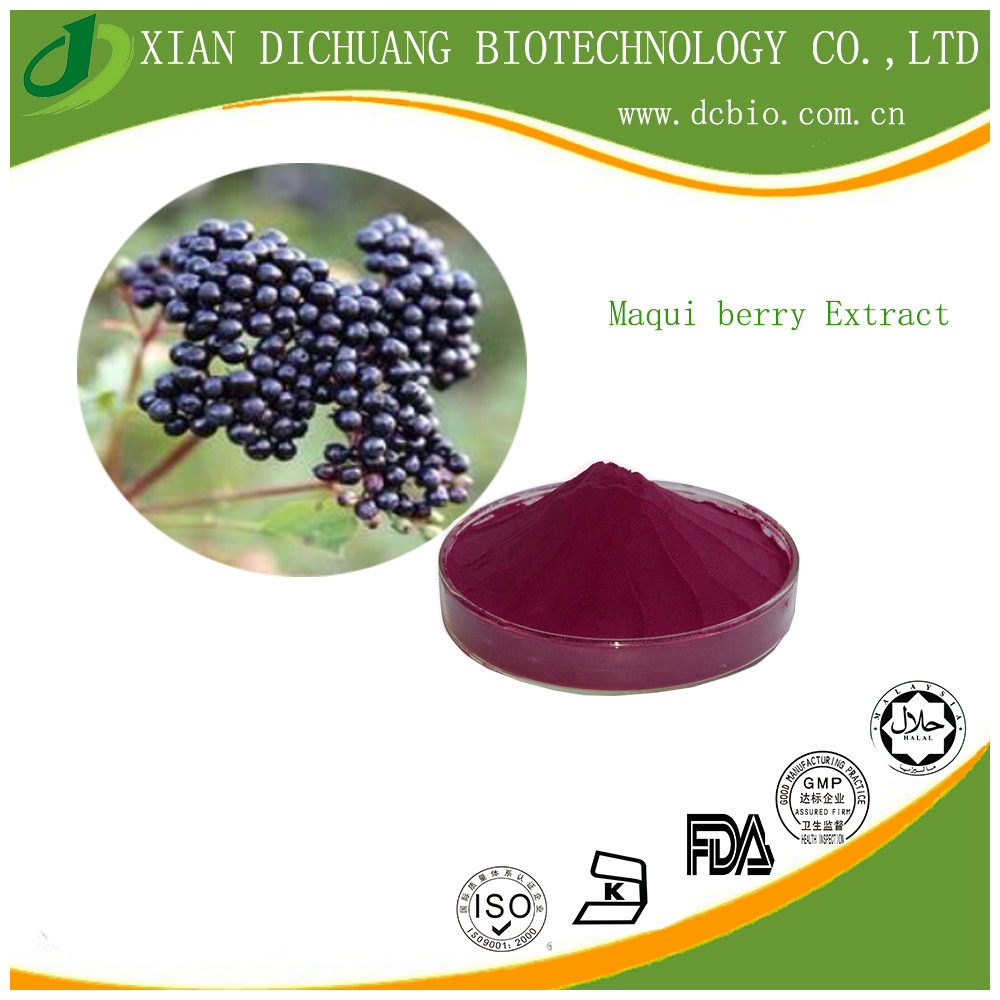 Hot Sale spray dried fresh Maquiberry Extract Powder10:1 in china