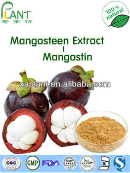 90% Alpha Mangostin Powder/ Mangosteen Extract