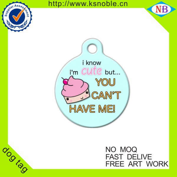 wholesale cheap printing your own logo dog tag for kids
