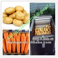 DY series carrot washing machine