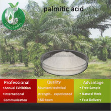 Saw Palmetto in India/100% natural saw palmetto extract/palmitic acid