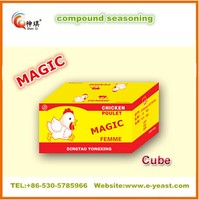 Magic Seasoning powder China supplier