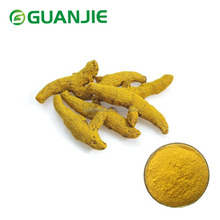 ISO Manufacturer Wholesale Turmeric extract curcumin powder Price