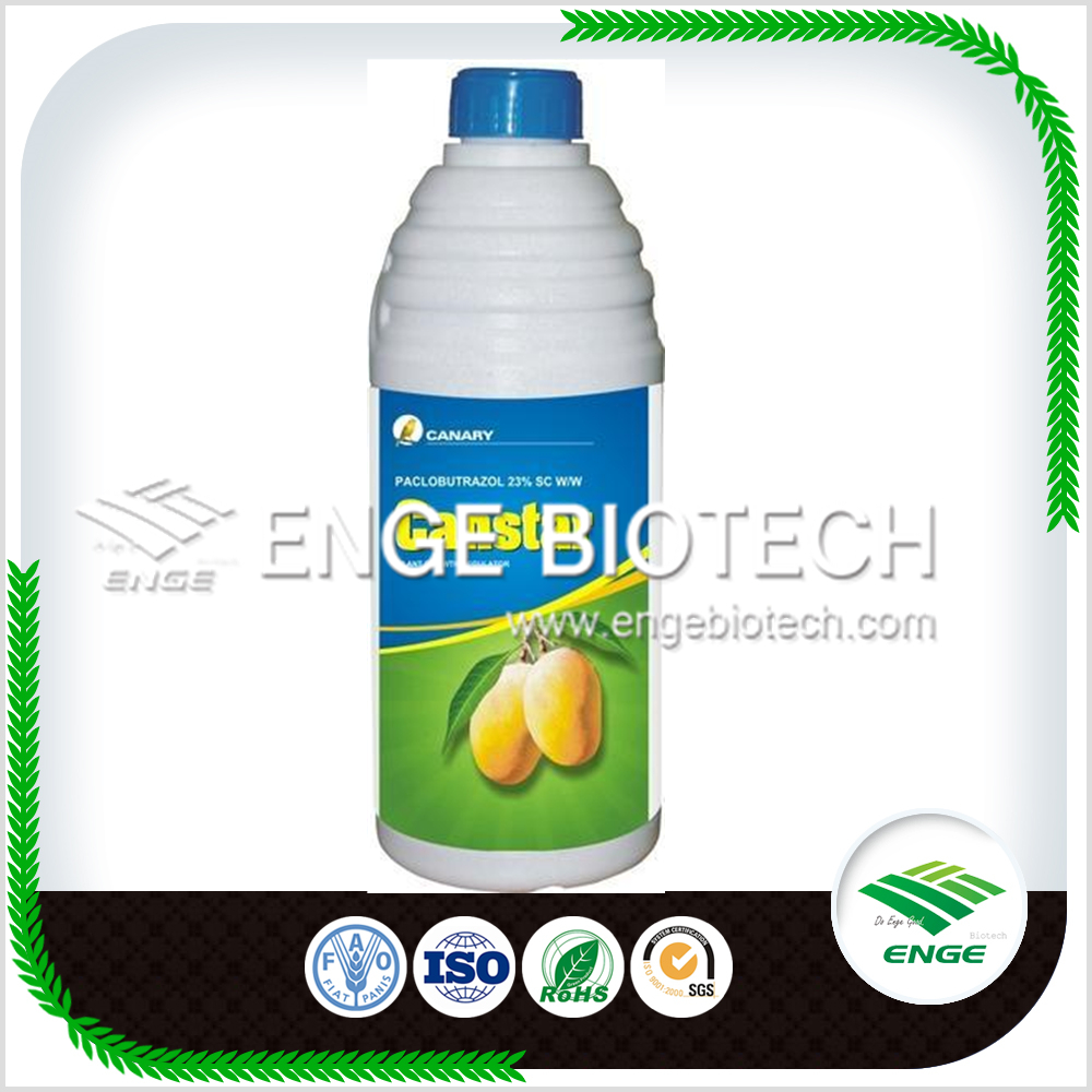 Hot Sale Liquid Plant Hormone Paclobutrazol 25% SC for Mango