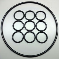 High Grade Fluorocarbon O Ring seal