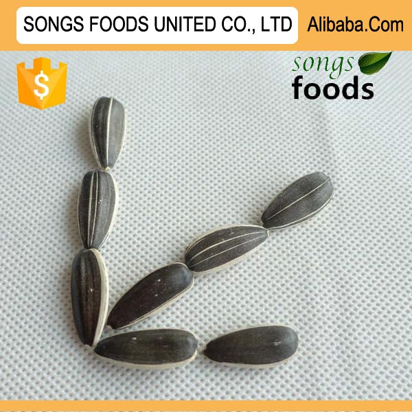 Exports Egyptian Sunflower Seeds Best Quality