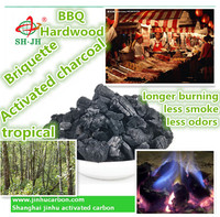 Briquette Tropical Hardwood Charcoal for Bbq