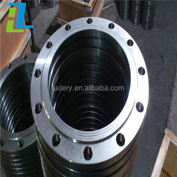 API forged stainless steel companion flange