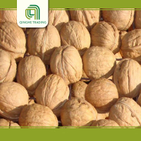 Hot selling thin shell walnuts with high quality red walnuts