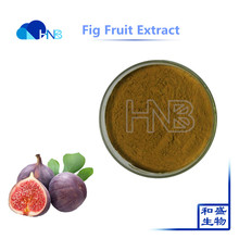 High quality 100% natural fig fruit extract 10:1,Ficus carica extract