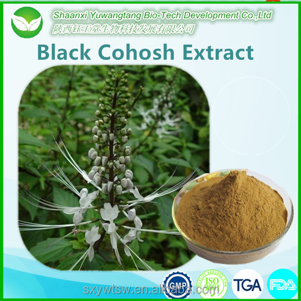 Black Cohosh Extract Powder Cimicifugae Racemosae Rhizome