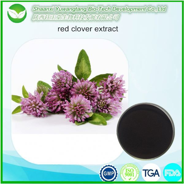 Organic red clover extract for antibiotic/anti-tumor