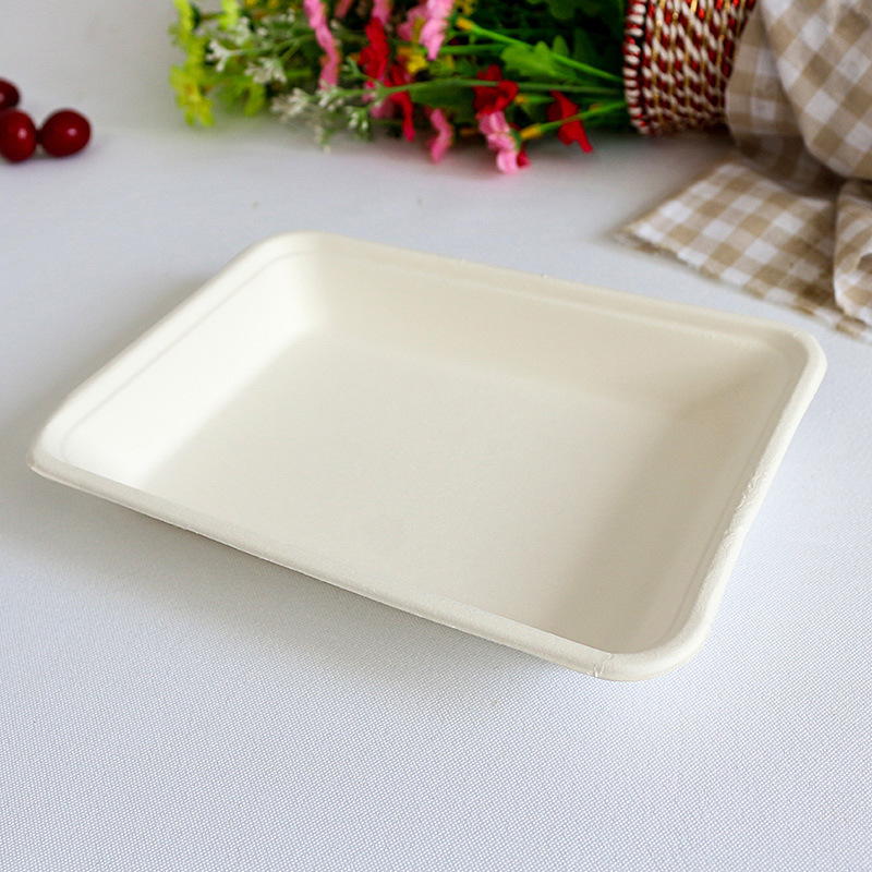 Hot Biodegradable Food Ng Strong Disposable