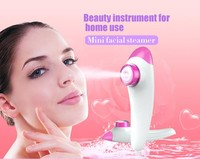 Best selling home health products facial and head steamer handheld mini facial steamer