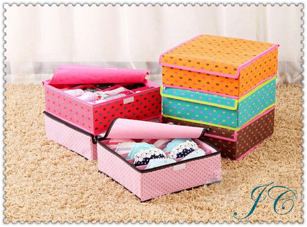 Best Sale Travel Bra Underwear Organize Organizer Box With High Quality