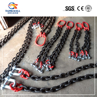 High Quality Two Legs Combined Chain Sling/Lifting Sling with Shackles,Connecting Links