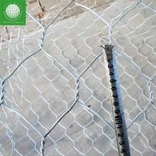 Galvanized gabion wire mesh for stone retaining wall cage Factory