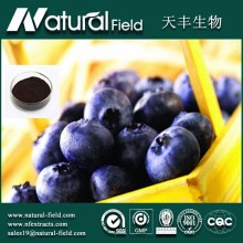 Best Selling High Quality Acai Berry Extract Powder