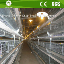 Standard H type multi-tier automatic layer chicken cage for sales in Philippines