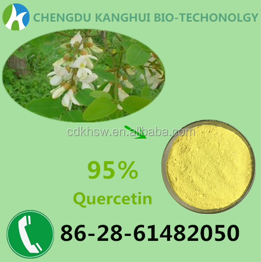 Botanical extract powder 95% Quercetin dihydrate 6151-25-3