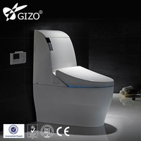 automatic toto toilet seat Massage wash Intelligent Toilet