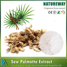 Ex-factory price Saw Palmetto extracted powder