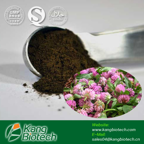 Kang Biotech bulk supply high purity Isoflavones Red clover extract