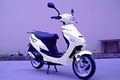 50CC Cheap Small Dirt Adults Gas Scooter with EEC Sunny