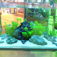 DICI glass tank fish tank and accessories