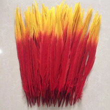 Wholesale 30-35cm red and yellow 2 colors cheap ringneck pheasant feathers
