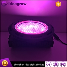 Most popular chinese products 100w scientific name of beans led grow light night grown used for medical plants