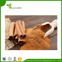 Best selling product specification ceylon cinnamon dehyde powder