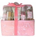$0.5-$3.0 SPA bath gift set--2011NEW
