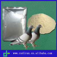 Racing Pigeon Medicines Antibiotic Sulfaclozin Natric Monohudratesper Powder