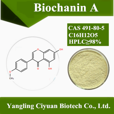 Biochanin A 98% Red Clover Extract Biochanin A Powder