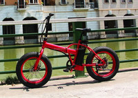 2015 popular electric folding stand up bicycle 36V 250W