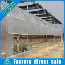 Large size multi span industrial greenhouse with ventilation system