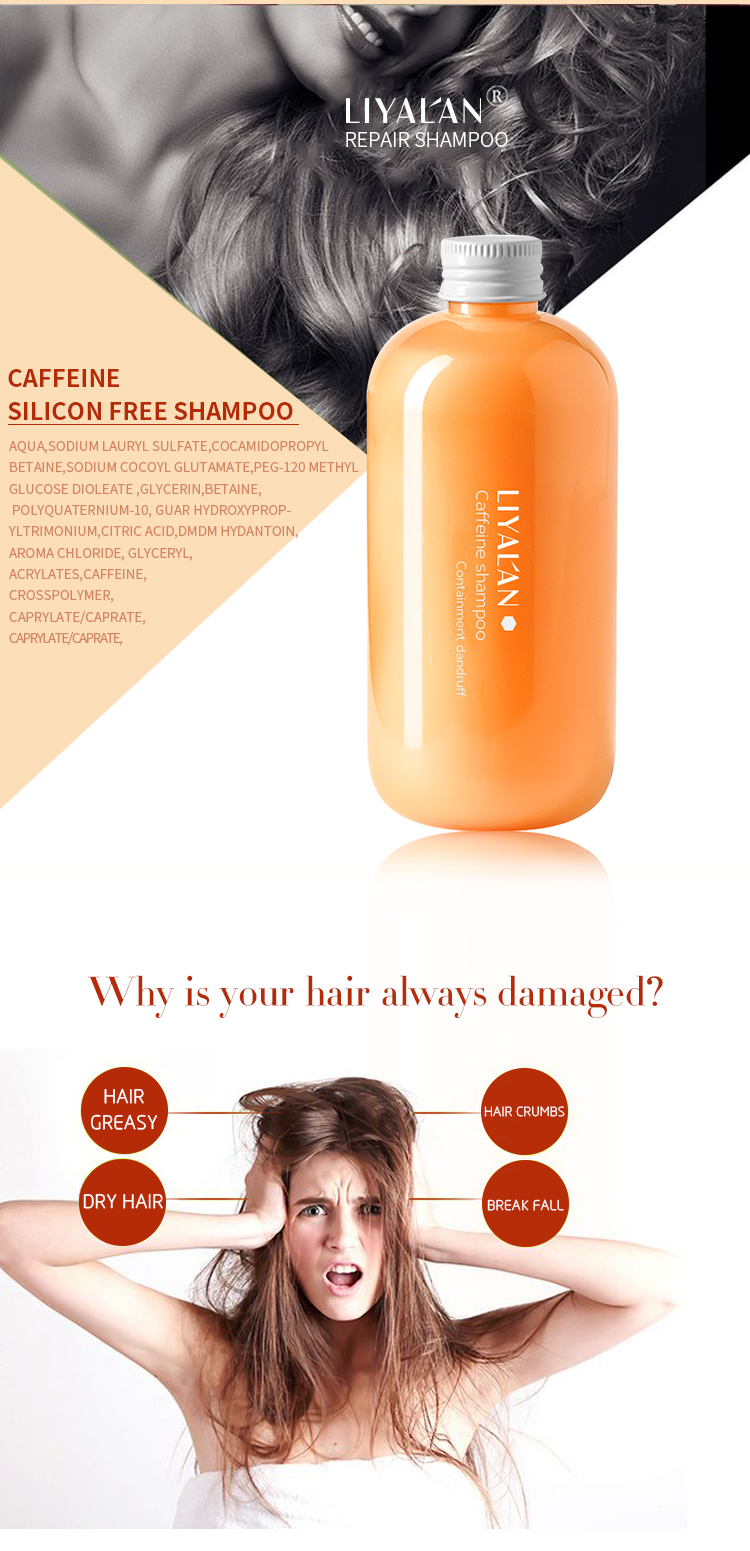 Private label 2019 Hot selling Caffeine Shampoo for Hair Growth