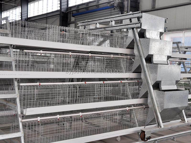 automatic layer poultry cages