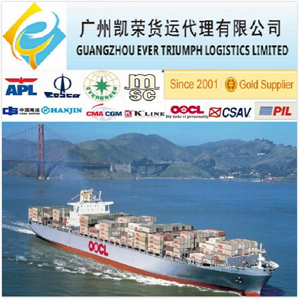 Ocean Freight Shipping from Guangzhou/Shenzhen China to New Delhi