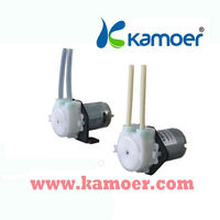 Kamoer 12V DC Micro Periataltic Liquid Pumps for Electric